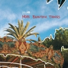 Cover of the album More Beautiful Things