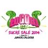 Cover of the album Sucré salé (Junior Caldera Remix 2014) - Single