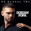 Cover of the track Pe placul tau
