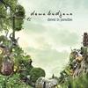 Couverture de l'album Dawai In Paradise