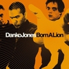 Cover of the album Born a Lion