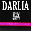 Cover of the album Ballad of Black and White - Single