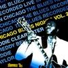 Couverture de l'album Chicago Blues Nights Vol. 2