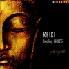 Couverture de l'album Reiki Healing Waves