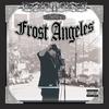 Couverture de l'album Welcome to Frost Angeles