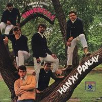 Couverture du titre Hanky Panky
