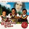 Cover of the album Zwoa rehbraune Augen