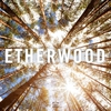 Couverture de l'album Etherwood