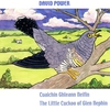 Cover of the album Cuaichin Ghleann Neifin (The Little Cuckoo of Glen Nephin)