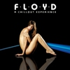 Cover of the album Floyd: A Chillout Experience