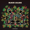 Cover of the album Black Lillies