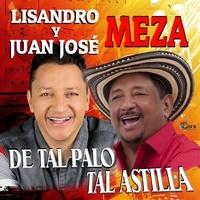 Couverture du titre De Tal Palo Tal Astilla