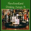 Couverture de l'album Newfoundland Drinking Songs 3
