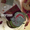 Couverture de l'album Wild Light