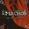 Couverture de l'album La Reunion