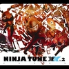 Couverture de l'album Ninja Tune XX, Vol. 2 (Bonus Version)