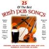 Cover of the album 25 of the Best Irish Pub Songs - Volume 1