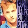 Couverture de l'album Sudden Stop