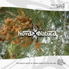 Cover of the album Nova Natura 2