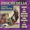 Cover of the album Psychedelia, Volume Five: Mynd the Gap