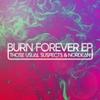 Cover of the album Burn Forever - Single