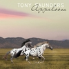Cover of the album Appaloosa