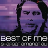 Couverture de l'album Best of Me: Shafqat Amanat Ali
