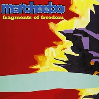 Cover of the track Fragments of Freedom