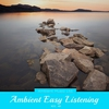 Couverture de l'album Ambient Easy Listening, Vol. 48