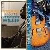Couverture de l'album Stories from Stompin' Willie