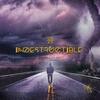Couverture de l'album Indestructible