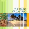 Couverture de l'album The Sound of Calypso