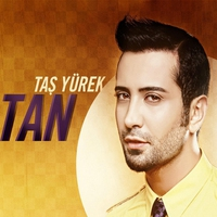 Cover of the track Taş Yürek