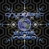 Couverture de l'album Electric Indigo