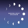 Cover of the album Moonlight Shadow (Remix) - Single