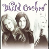 Cover of the album Wild Orchid