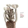 Cover of the album Amnesia Brown