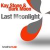 Cover of the album Last Moonlight (Remixes) - Single