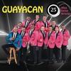 Cover of the album 25 Años, 25 Éxitos, 25 Artistas