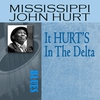 Couverture de l'album It HURT'S In the Delta
