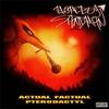 Cover of the album Actual Factual Pterodactyl