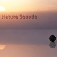 Cover of the track Nature Sounds