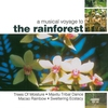 Cover of the album A Musical Voyage To The Rainforest