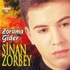 Cover of the album Zoruma Gider