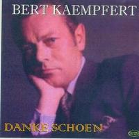 Cover of the track Danke schoen