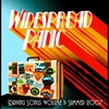 Couverture de l'album Driving Songs Vol. I: Summer 2007