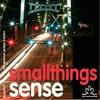 Couverture de l'album Smallthings