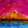 Couverture de l'album Desert Fires