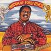 Couverture de l'album Wisdom of Forgiveness