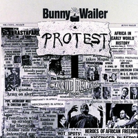Cover of the track Protest